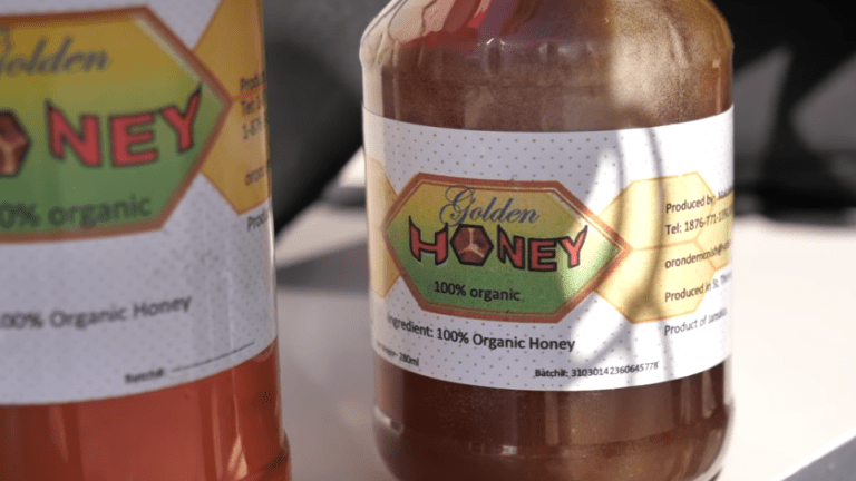 Jamaican man arrested for bringing honey into the United States