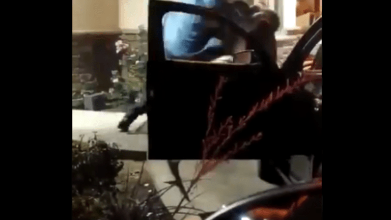 Brawl breaks out in Cali Popeyes restaurant