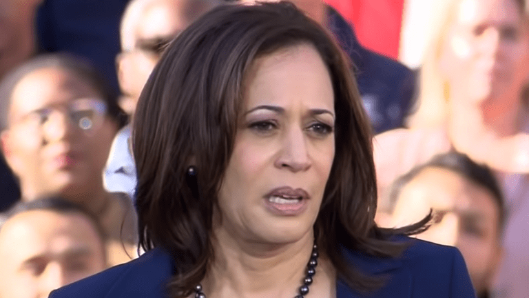 Biden wants Kamala Harris on his team: 'I'd consider her for anything'