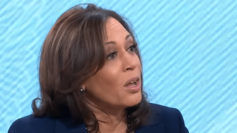 Kamala Harris blasts Trump over $8.6B border wall budget