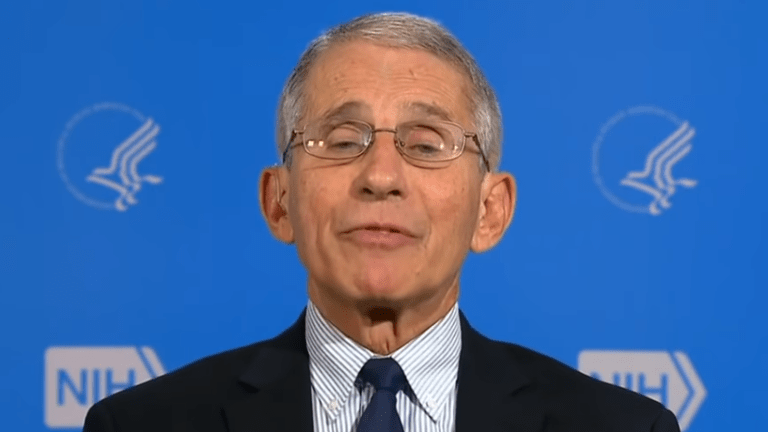 Fauci predicts 'millions' of coronavirus cases and over 100,000 deaths in the US